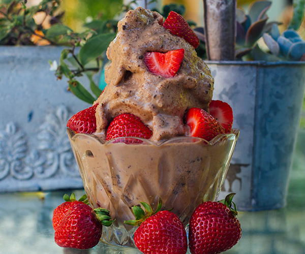 Chocolate Peanut Butter Shakeology Ice Cream