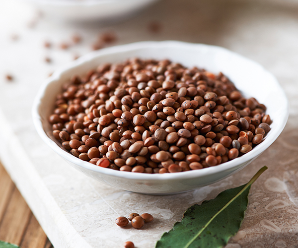 Brown Lentils | The Beachbody Blog