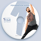 Foundation DVD