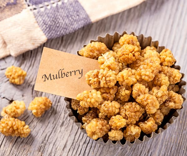 Healthy Snacks for Work Under 200 Calories - Dried Mulberry