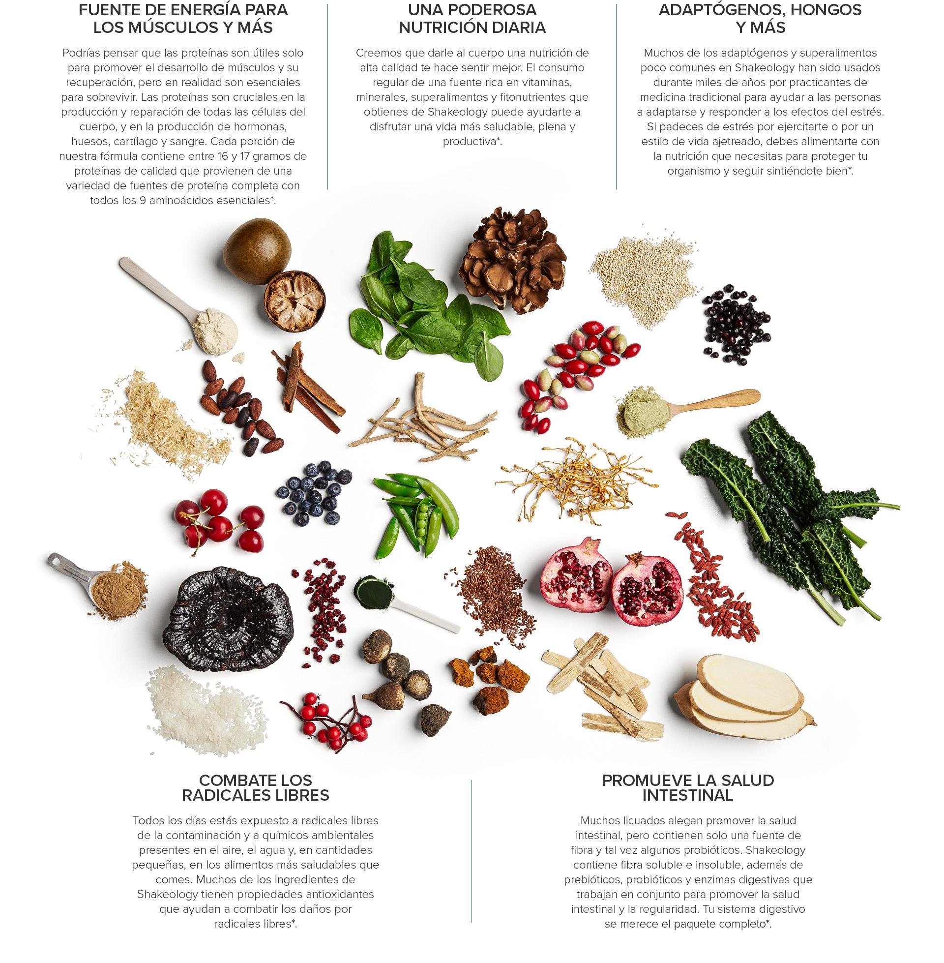 ¿Qué nutrición diaria necesito?
